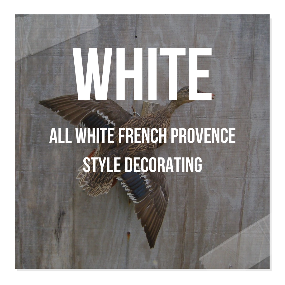 All White French Provence Style Decorating