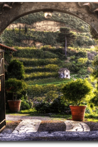 French Provence Outdoor Decorating And Gardening