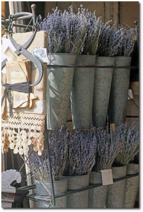 French flower buckets in zinc
