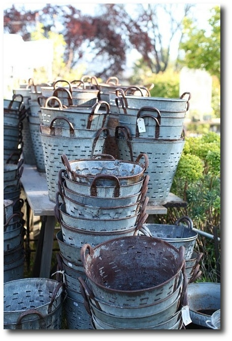 Grape Buckets- Ideas For Provence Decorating