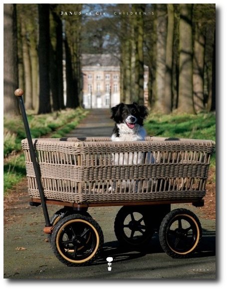 Basket-Wagon-by-Janus-et-Cie